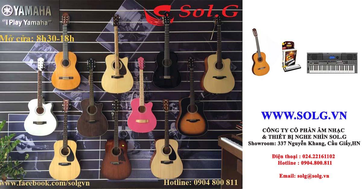 Giới thiệu về Solg.vn- nhà nhập khẩu trực tiếp đàn guitar, đàn piano, kèn harmonica