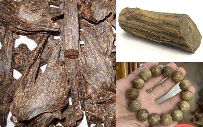 Trầm hương là gì? Phân loại và Công dụng của trầm hương