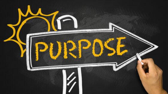 Purpose đi với Giới từ gì?